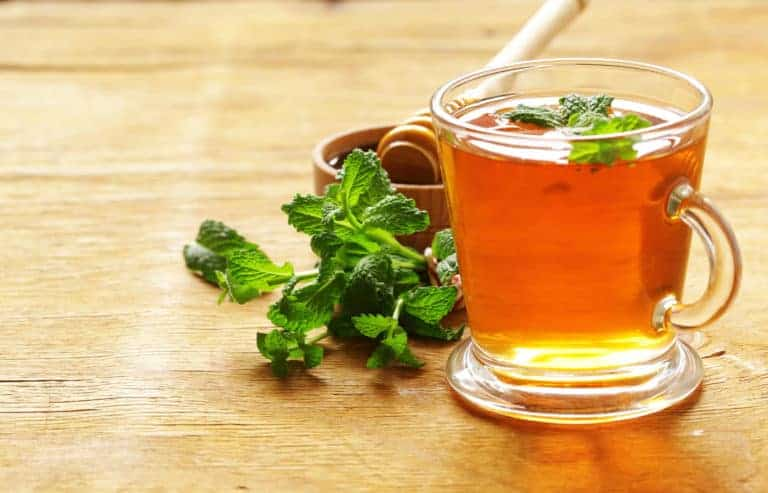 מליסה רפואית, תה מליסה, נוגדי חימצון, מרגיע, משפר מצבי רוח, צמח אנטי דכאוני, צמח משתלה, צמחי מרפא בגינה