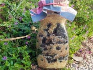 ליקר תות שחור, מתכון להכנת ליקר תות עץ, תותים, תות שחור, וודקה תות שחור